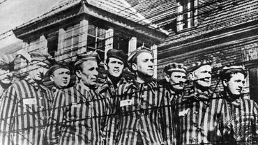 Could the Holocaust Have Been Prevented?