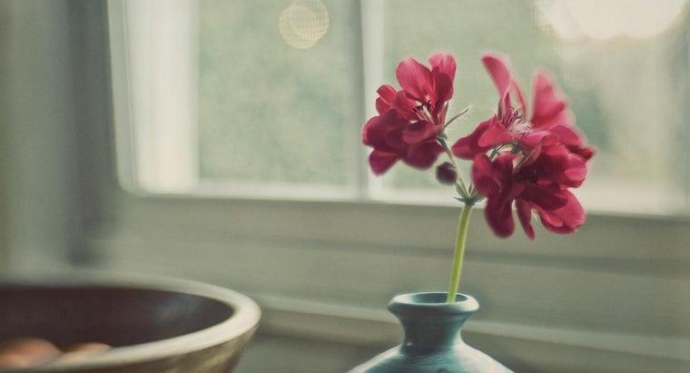 deadhead-geraniums