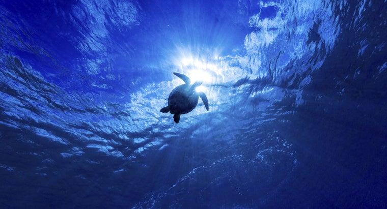 deepest-ocean-world