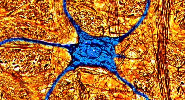 definition-neurological-sequelae