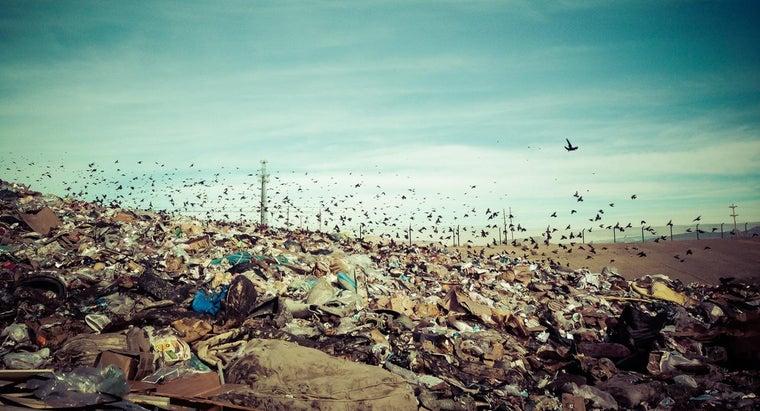 definition-non-biodegradable