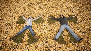 What Are Some Descriptive Seasonal Words Associated With Autumn?