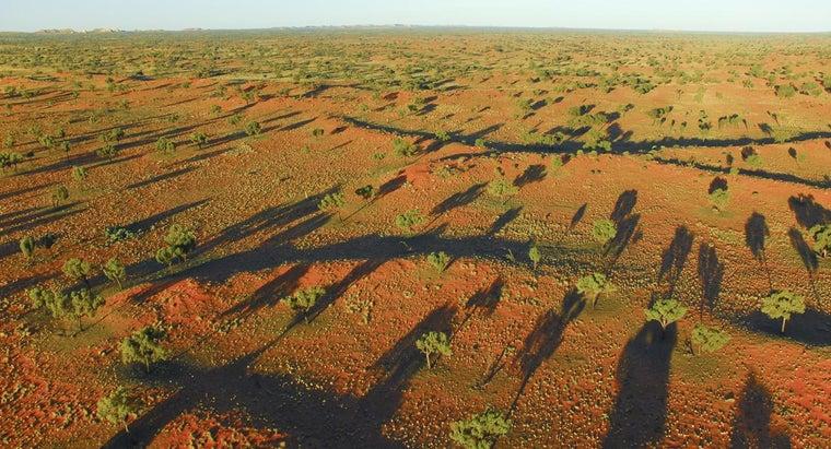 desert-ecosystem-like