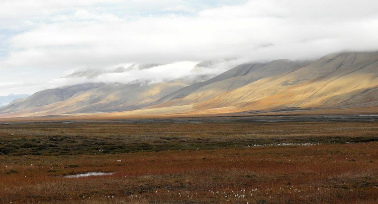 desert-similar-tundra