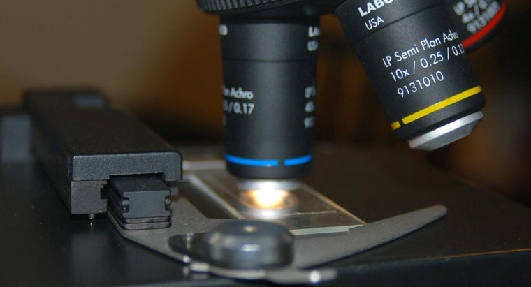 diaphragm-microscope