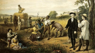 What Did Abolitionists Believe In?