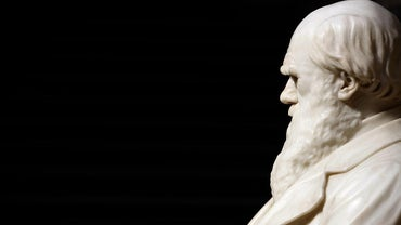 Why Did Charles Darwin Cause Controversy?