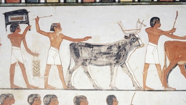 What Did Men Wear in Ancient Egypt?
