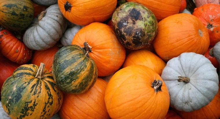 did-pumpkins-come-originally