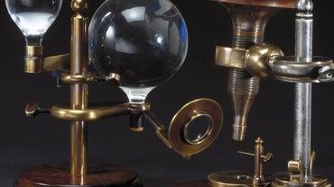 What Did Robert Hooke Do?