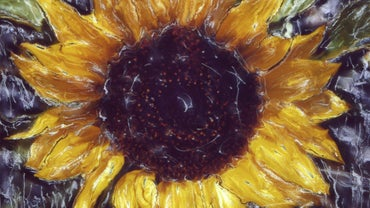 Why Did Vincent Van Gogh Paint Sunflowers?