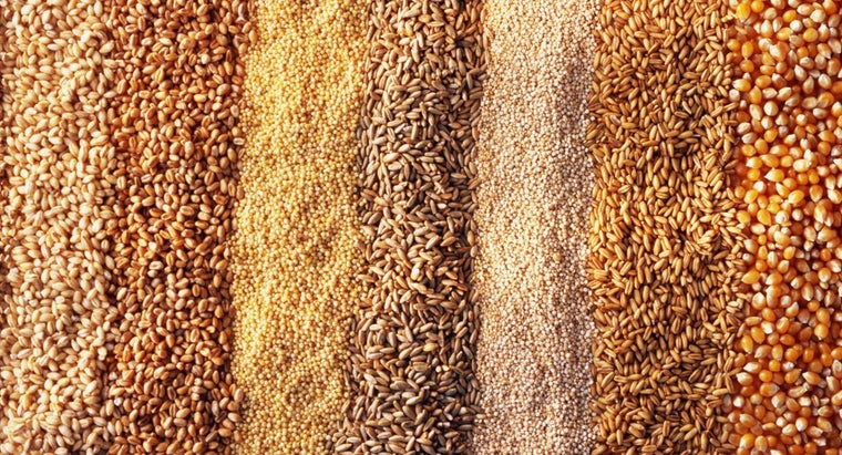 difference-between-barley-wheat