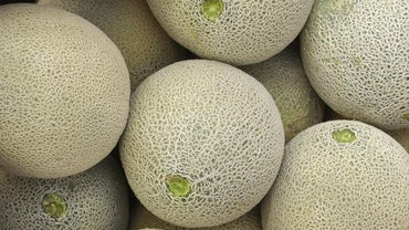 What Is the Difference Between Cantaloupe and Muskmelon?