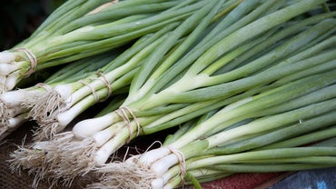 What Is the Difference Between Chives and Scallions?