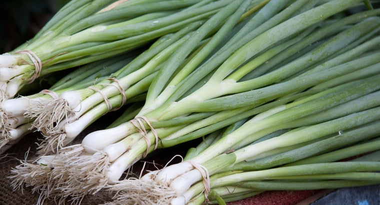 difference-between-chives-scallions