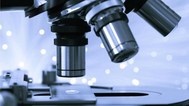 What Is the Difference Between Microscopic and Macroscopic?