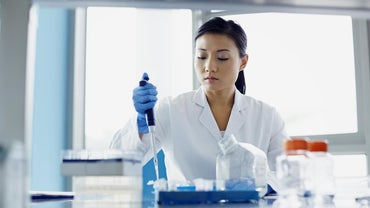 What Is the Difference Between Pure and Applied Research?