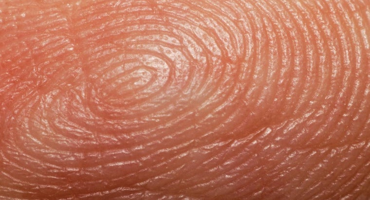 difference-between-visible-latent-fingerprints