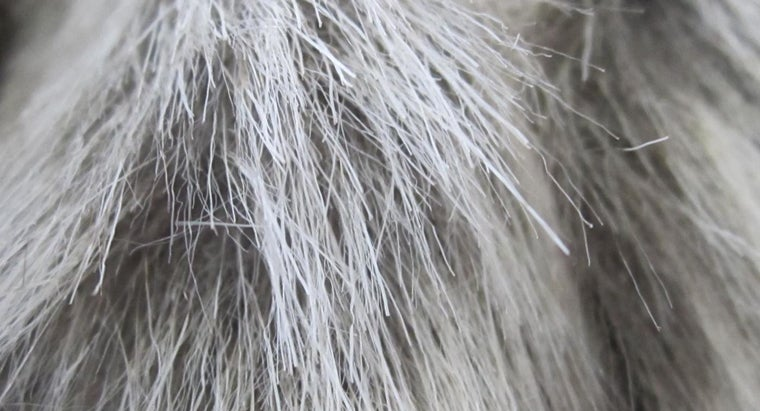 differences-between-natural-synthetic-fibers
