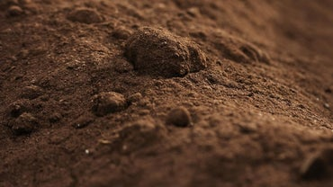 What Are Some of the Different Types of Soil?
