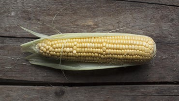 What Are Some Different Ways to Cook Corn in the Microwave?
