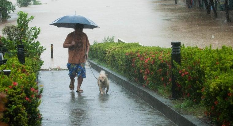 different-weather-disturbances