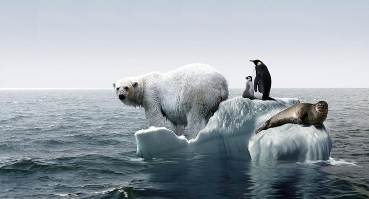 disadvantages-global-warming