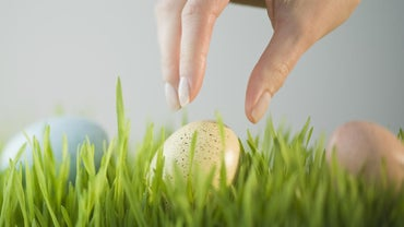 What Are Some Easter Egg Hunt Ideas for Adults?