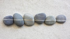 What Are Some Easy Zen Riddles?