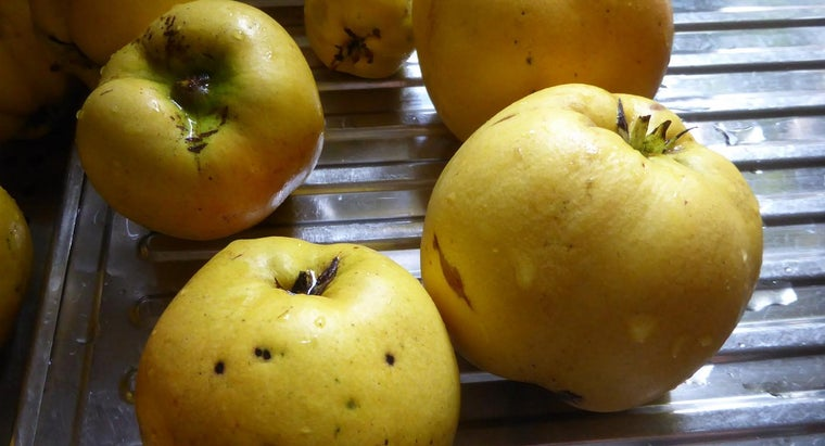 eat-quince-fruit