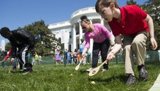 What Is Egg Rolling?