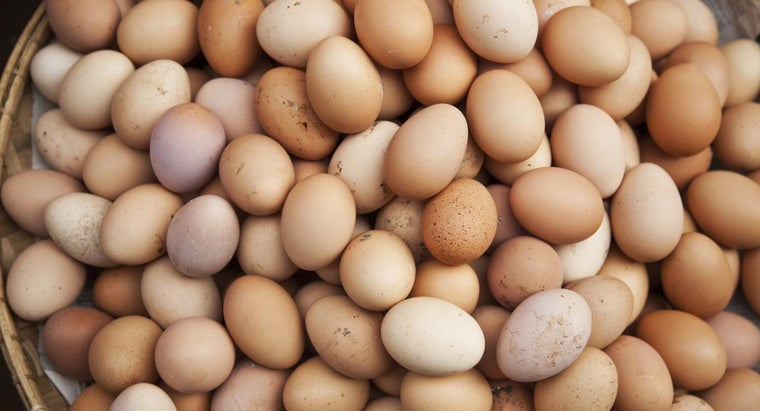 eggs-considered-dairy-poultry