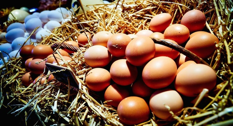 eggs-considered-dairy-products
