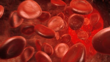 What Does an Elevated Hemoglobin Count Mean?