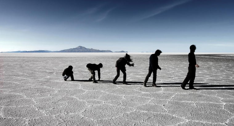evolutionists-believe