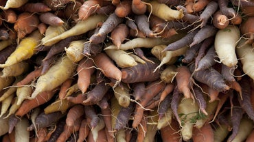 What Are Examples of Root Vegetables?