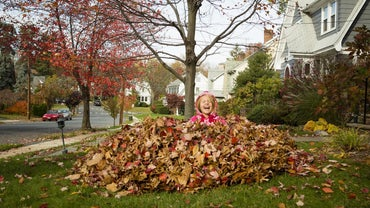 What Are Some Fall Season Safety Tips?