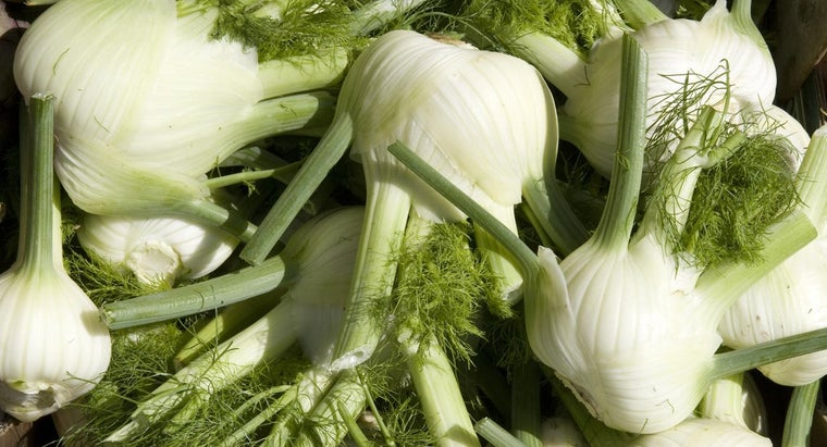 fennel-taste-like