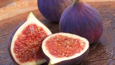 Where Do Figs Grow?