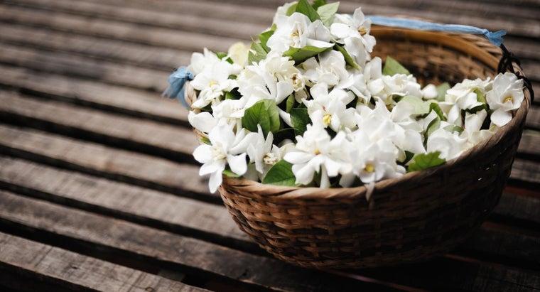 flowers-grow-italy