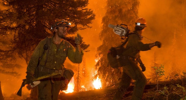 forest-fires-affect-environment