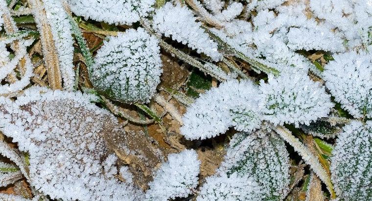 frost-line