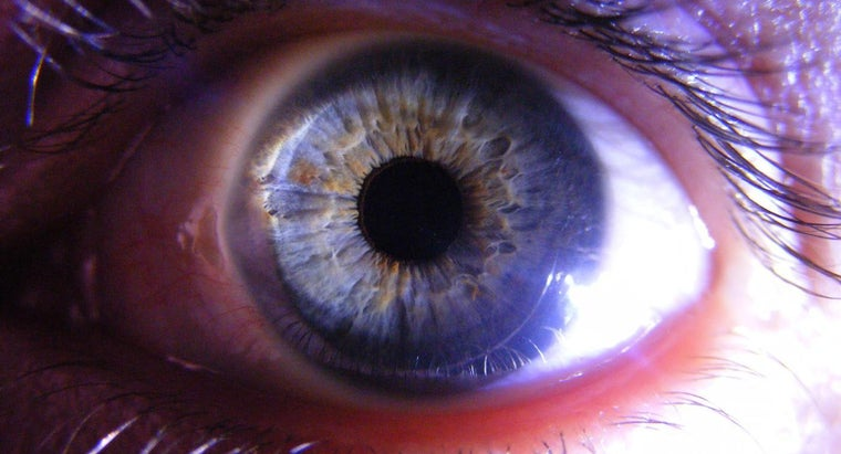 function-cornea