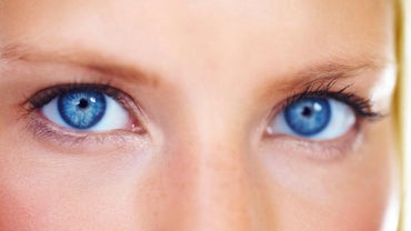 What Is the Function of the Eyes?