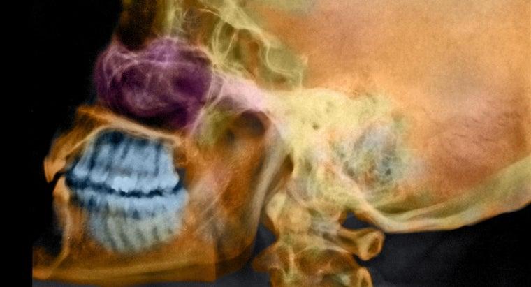 function-frontal-sinus