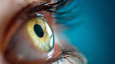 What Is the Function of the Pupil?