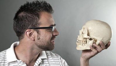 What Is the Function of the Skull?