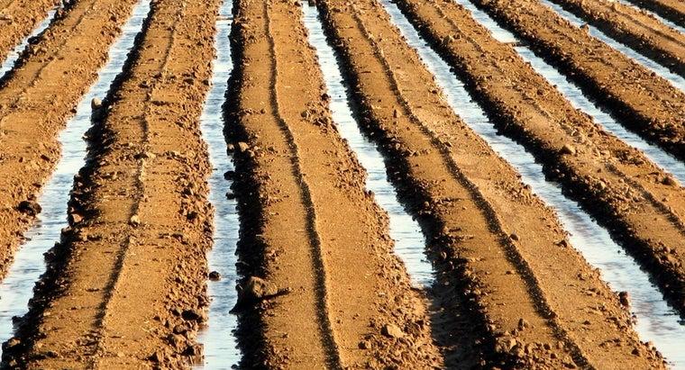 furrow-irrigation