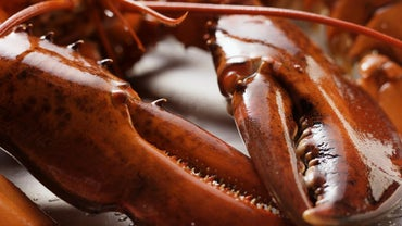 What Goes Well With Lobster?