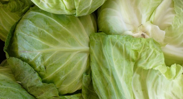 good-cabbage-soup-recipe